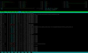 htop auf einem frequentierten Webserver